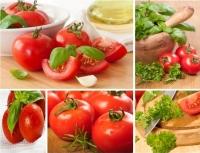 10 healthiest foods