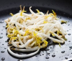 stir fried bean sprouts